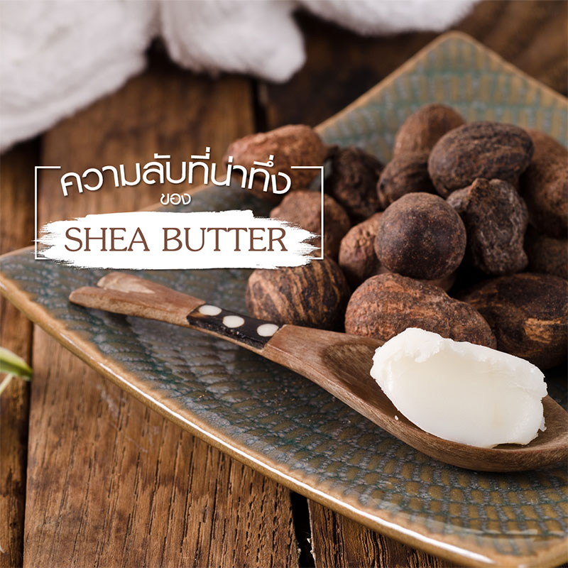 "Discover the magical benefits of  ""Shea Butter"""