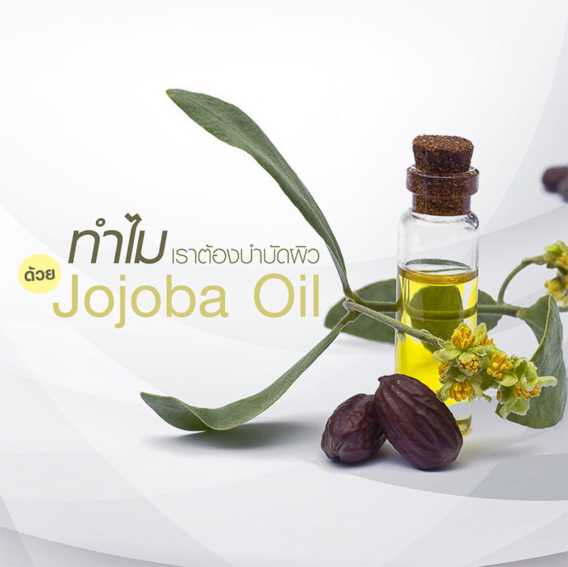 Why Jojoba oil is an ideal ingredient to use for treating skin?